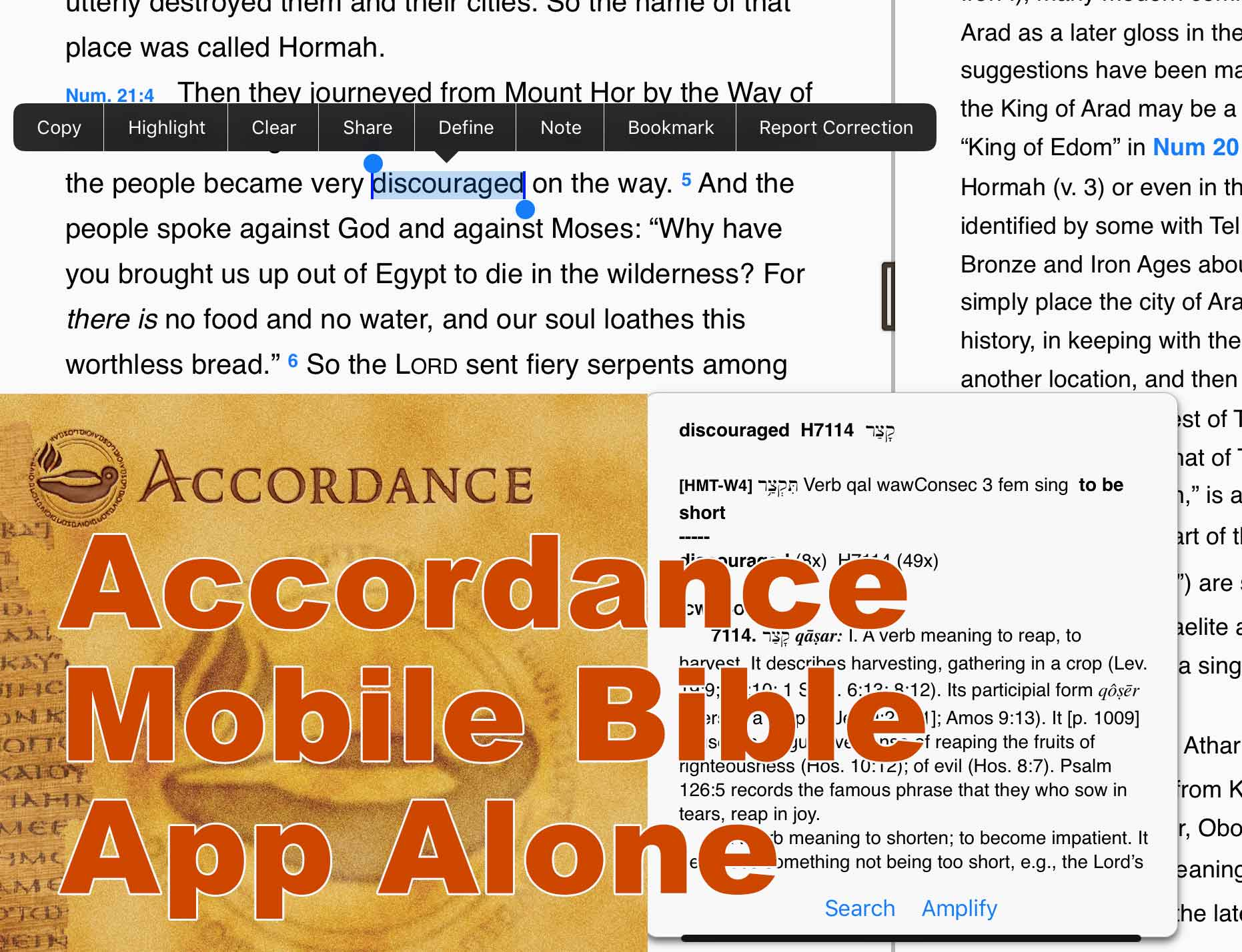 accordance-mobile